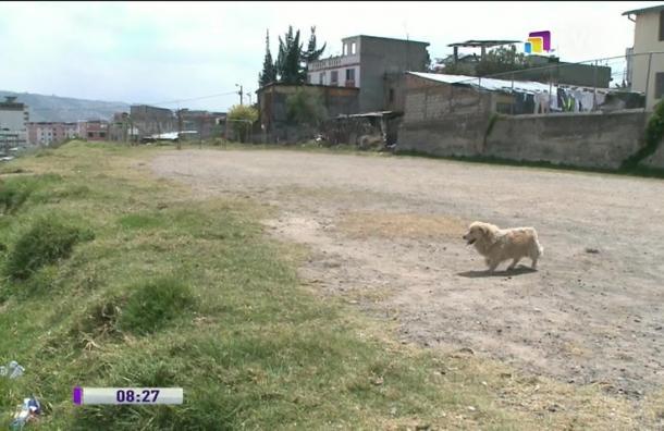 Habitantes denuncian basurero en parque de Chilibulo